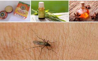 Översikt över folkmekanismer för myggor och midger i naturen