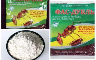 Medverkar Fas från kackerlackor: tabletter, gel och pulver