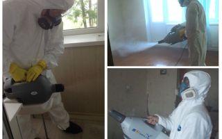 Kall dimma behandling för bedbugs