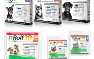 Drops Rolf Club 3D från loppor för hundar och katter