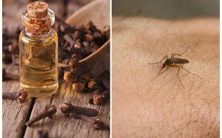 Klutolja mot myggor