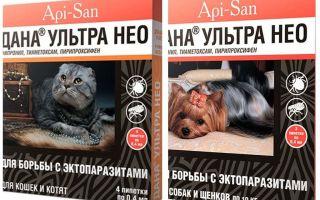 Dana Ultra Neo droppar från loppor för katter och hundar