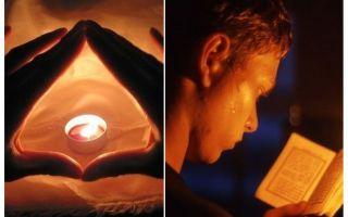 Tomter och böner från bedbugs i lägenheten