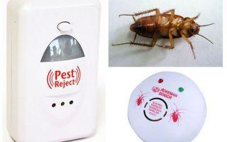 Elektroniska kackerlacka repellers