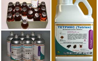 Tetrix botemedel mot bedbugs