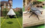 Hemlagad fällor för gadflies och gadflies