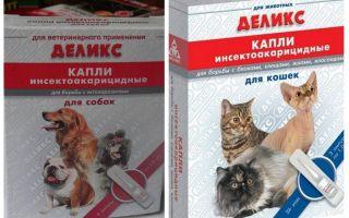 Läckra loppdroppar för katter och hundar