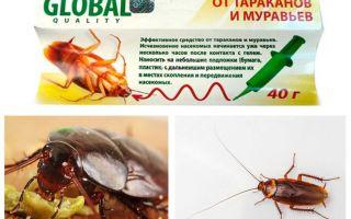 Kackerlacka Remedy Global (Global)