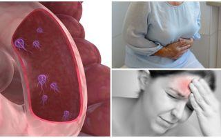 Hur man bestämmer närvaron av Giardia i människokroppen