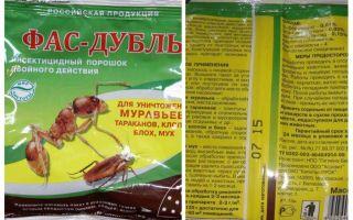 Betydar Fas Double och Super Fas från bedbugs