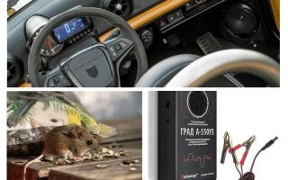 Car repeller råttor och möss