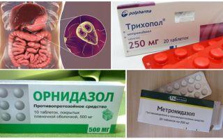 De bästa drogerna för behandling av Giardia hos vuxna