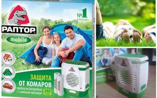Raptor på myggbatterier
