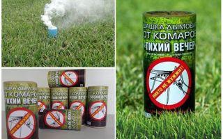 De bästa rökkontrollerna för myggor
