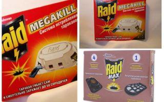 Kackerlacka Raid: fällor, spray, aerosol