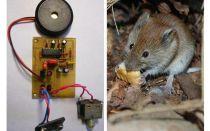 Ultraljud repeller råttor och möss med egna händer