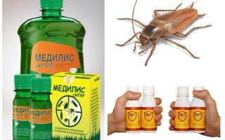 Hur och hur man förgiftar kackerlackor hemma