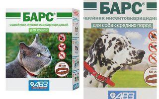 Collar Leopard från loppor för katter och hundar