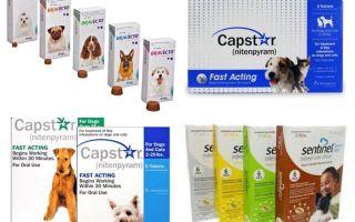 Tabletter för loppor och fästingar för hundar