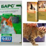 Loppdroppar för katter