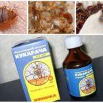 Cucaracha botemedel mot bedbugs-1