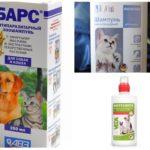 Loppskampor för katter och hundar