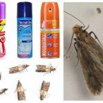 Moth sprayer
