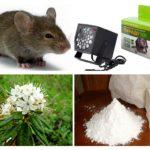 Metoder för att hantera möss