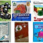 Kemikalier för att bekämpa bladlus
