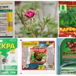 Giftiga kemikalier för växtskydd