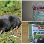 Mole Chemicals