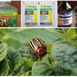 Metoder för hantering av bladbaggar