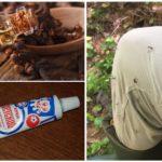 Myggflöde med nötköttolja