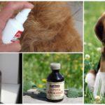 Myggavstötningsmedel för djur