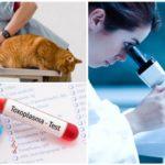Tester för giardiasis